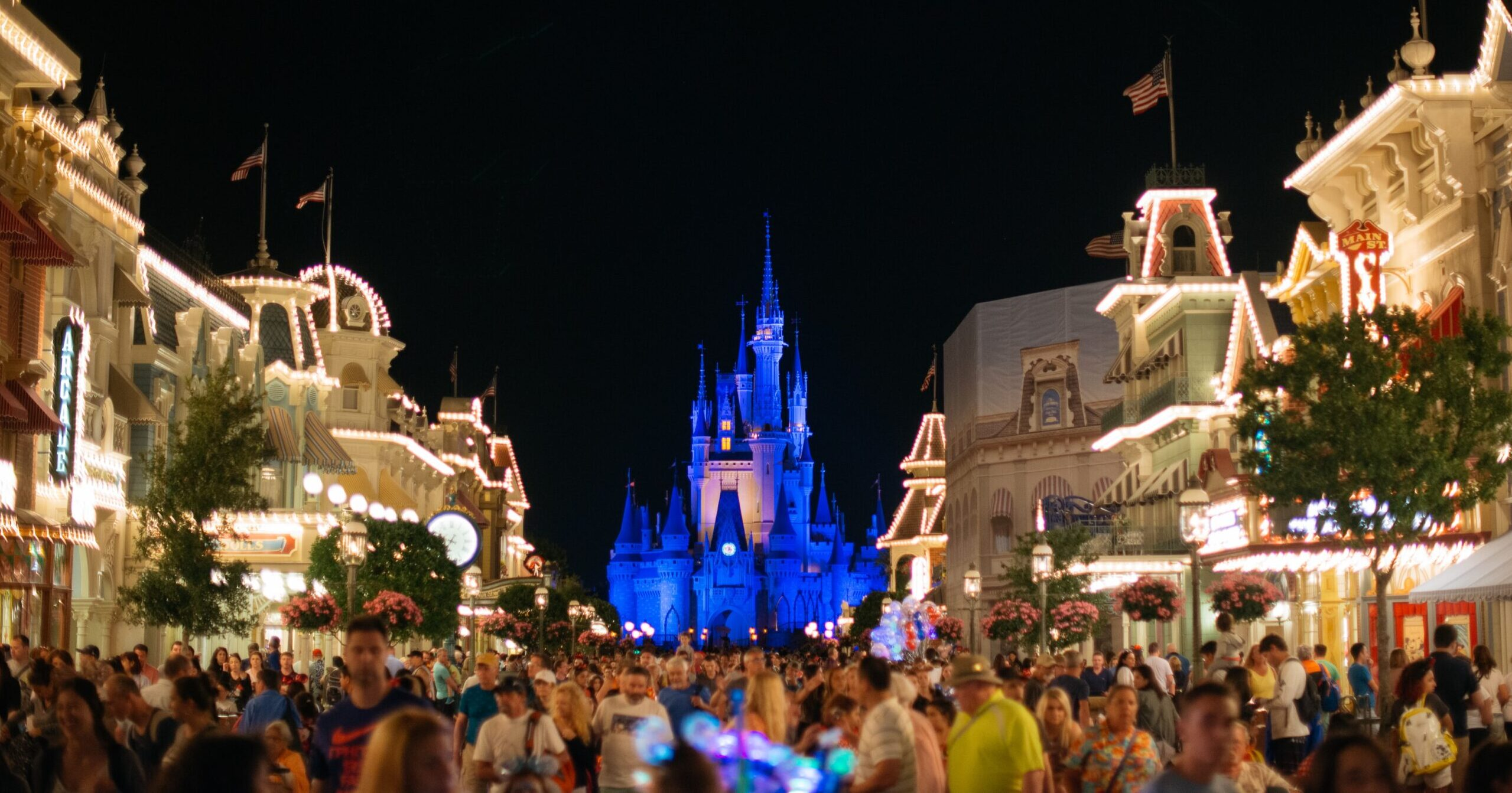 Disney. castle